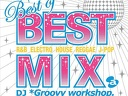 2012  Best of Best Mix (DJ *Groovy workshop.*)